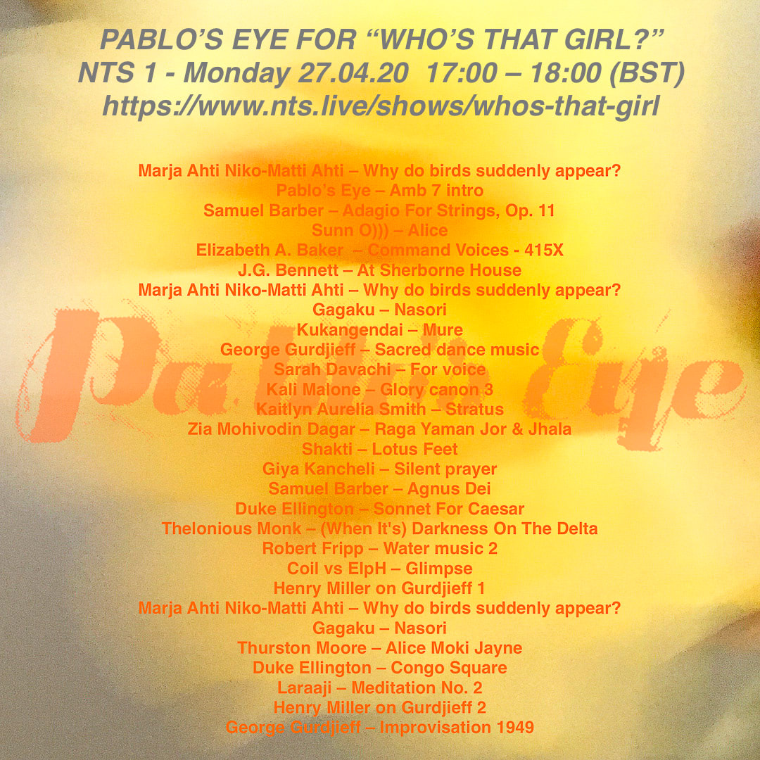Flyer - Pablo's Eye for Who's tha girl show