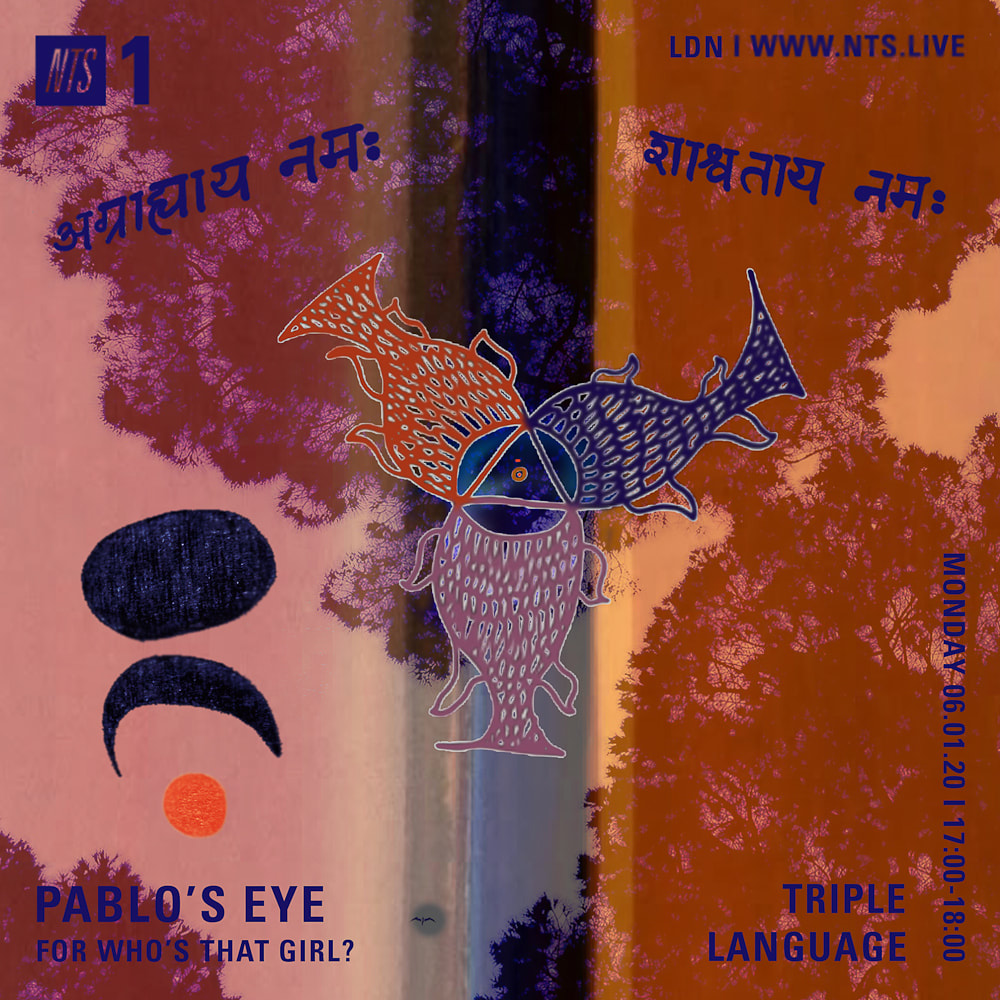 Pablo's Eye flyer NTS - Triple Language/who's that girl show